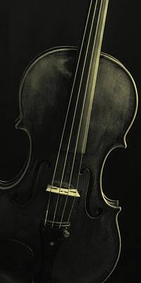 Photograph -  Antique Violin 1732.47 by M K Miller