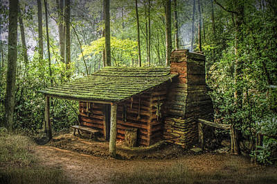 Appalachian Mountain Cabin Print by Randall Nyhof
