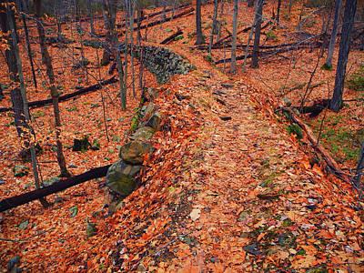 Photograph - Appalachian Trail In Ny by Raymond Salani III
