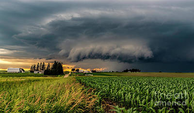 Photograph - Approaching Storm by Willard Sharp