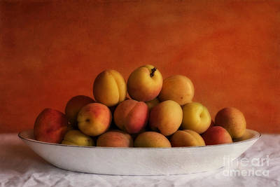 Table Photograph - Apricot Delight by Priska Wettstein