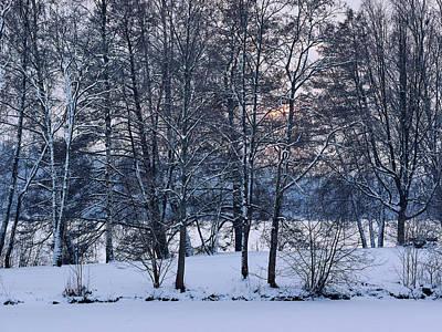 Photograph - Arboretum Sunset by Jouko Lehto