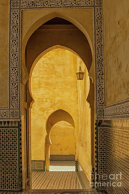 Photograph - Arched Doors by Patricia Hofmeester