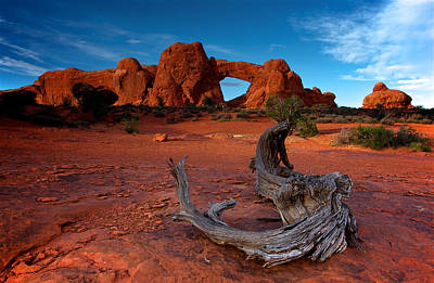 Print featuring the photograph Arches by Evgeny Vasenev