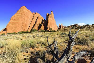 Photograph - Arches National Park  by Ben Graham
