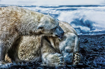 Photograph - Arctic Love by Gabriela Neumeier