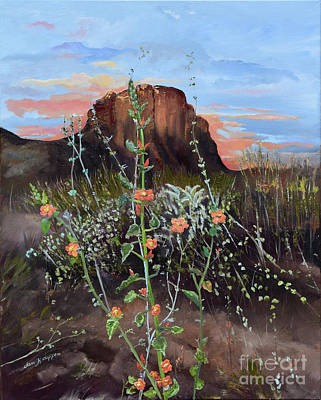 Arizona Desert Flowers-dwarf Indian Mallow Art Print