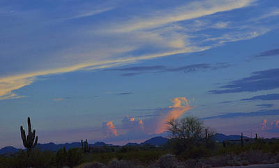 Photograph - Arizona Desert by Helen Haw
