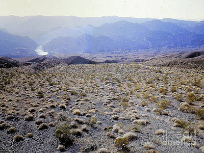 Photograph - Arizona Desert Plateau by Merton Allen