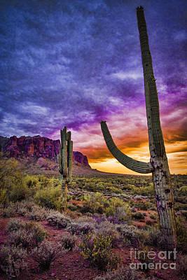 Fishhook Photograph - Arizona Sunset by Jon Berghoff