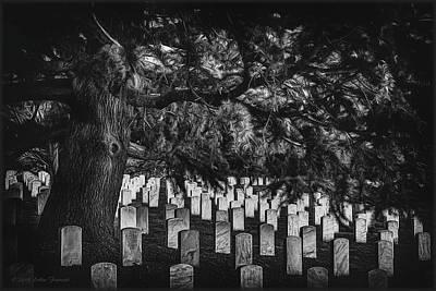 Photograph - Arlington  by Erika Fawcett
