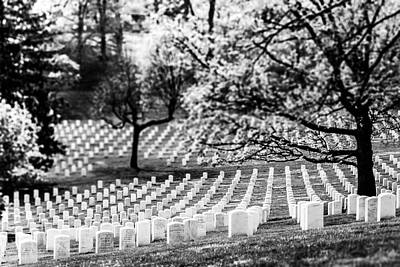Photograph - Arlington National Cemetery by SR Green