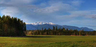 Photograph - Arrowsmith by Randy Hall