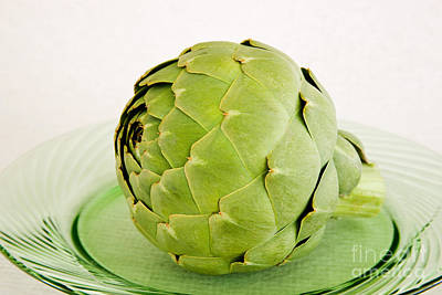 Cynara Photograph - Artichoke by Inga Spence