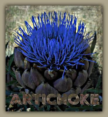 Artichoke Digital Art - Artichoke by Meiers Daniel