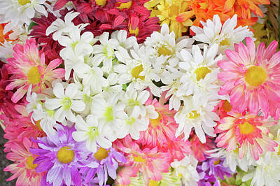 Spring Bloom Photograph - Artificial Flowers by Tom Gowanlock