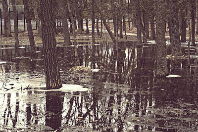 Photograph - As Above So Below by Cendrine Marrouat