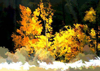 Digital Art - Aspen Glow by Gary Baird