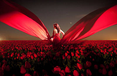 Photograph - Assembling The Tulips by Dario Infini
