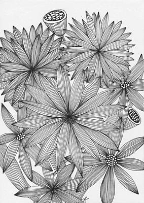 Aster Drawing - Asters by Elena Kuleshova