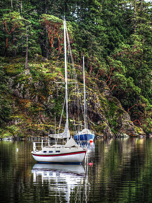 Photograph - At Anchor by Randy Hall