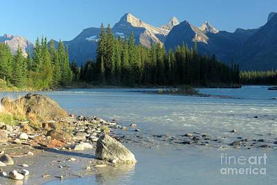 Photograph - Athabasca River by Frank Townsley