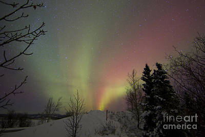 Photograph - Aurora Borealis, Twin Lakes, Yukon by Joseph Bradley