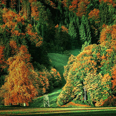 Photograph - Austrian Mountain Valley In Autumn by Pixabay