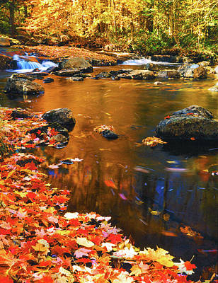 Photograph - Autumn Afternoon by Frank Houck
