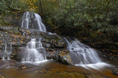 Autumn At Laurel Falls Art Print by Darrell Young