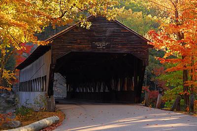 Autumn Bridge Art Print by William Carroll
