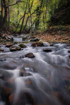 Photograph - Autumn By The River by Plamen Petkov