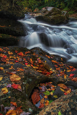 Photograph - Autumn Cascade by Reid Northrup