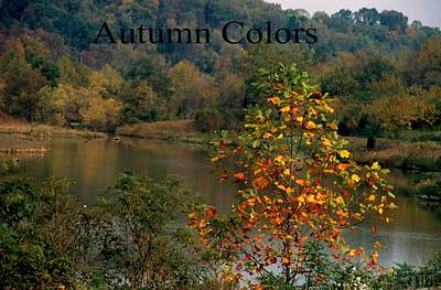 Autumn Colors Art Print by Gary Wonning