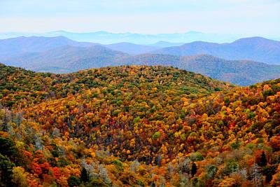 Photograph - Autumn Display by Allen Nice-Webb