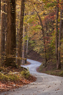 Leaf Photograph - Autumn Drive by Andrew Soundarajan