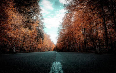 Photograph - Autumn Drive by Pixabay