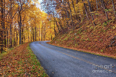 Photograph - Autumn Fall Colors Around The Bend by Dan Carmichael