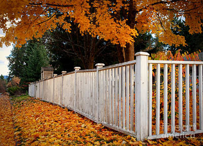 Photograph - Autumn Fence by Idaho Scenic Images Linda Lantzy