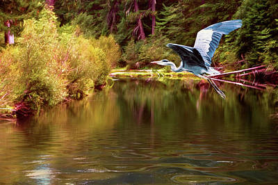 Photograph - Autumn Flight by Diane Schuster