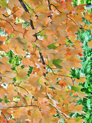 Autumn Foliage 3 Art Print by Lanjee Chee