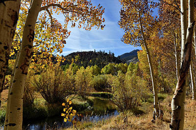 Autumn In Bishop Creek Art Print by Dung Ma