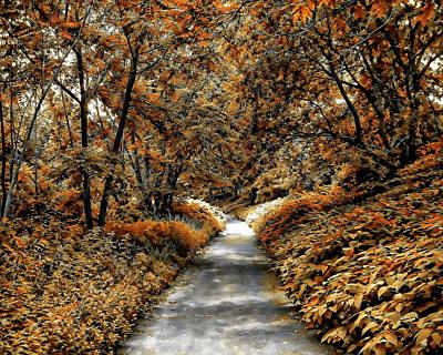 Photograph - Autumn In Stamford by Anthony Dezenzio