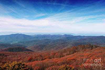 Photograph - Autumn In The Mountains by Rebecca Davis