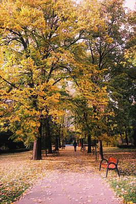 Photograph - Autumn In The Park by Brigitte Tohm