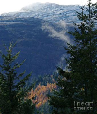 Photograph - Autumn Into Winter by Phil Banks