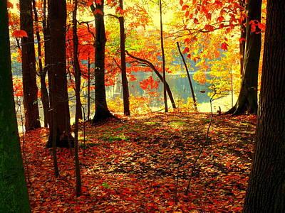 Autumn Lake Art Print by Aron Chervin