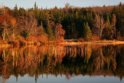 Autumn Lake Art Print by Kate  Leikin