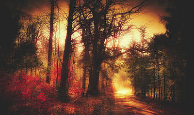 Photograph - Autumn Morning by Pixabay