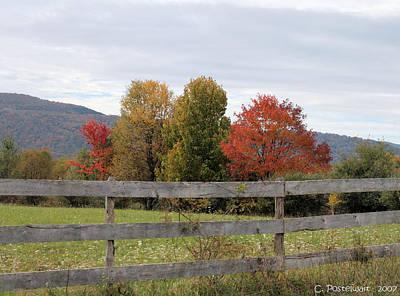 Autumn On Point Mountain Art Print